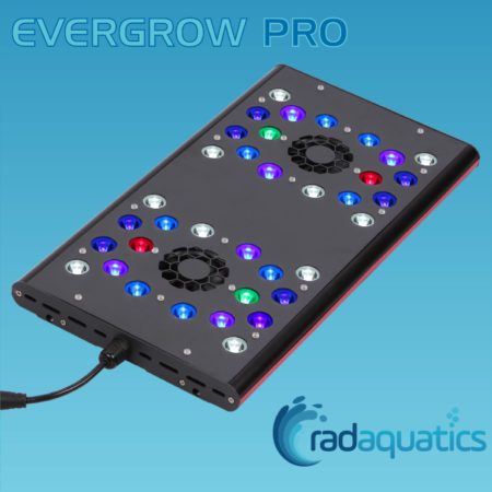Evergrow AquaOcean IT5040 PRO
