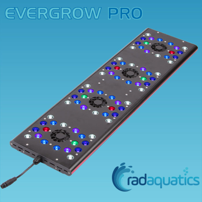 Evergrow AquaOcean IT5080 PRO